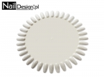 Stencil counter display colors - sunshine large dairy 48 colors