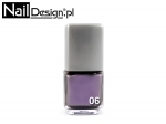 06 Magnetic nail lacquer 12 ml