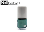 05 Magnetic nail lacquer 12 ml