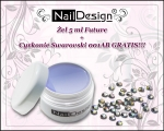 FUTURE Gel 5ml + zircon 001AB TND FREE!
