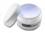 Żel Future 15 ml Profi Studio Line